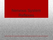 Clinical Microbiology Nervous System Reflexes Presentation
