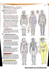 Systems of the Body Anatomy