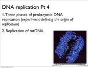 Lecture 6 DNA Rep pt 5 slides 2013
