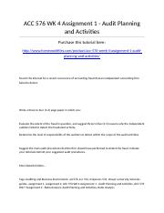 ACC 576 Week 4 Assignment 1 - Audit Planning and Activities.docx