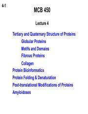 04 proteinstructure
