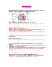Blood Vessels Study Guide  COMPLETED.doc