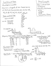 Lecture 2 Professors Class Notes