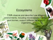 Ecosystems Background notes 7.10A (1)