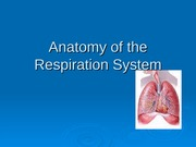 Anatomy of the Respiration System