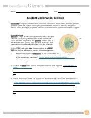 Meiosis Gizmo Student Worksheet - Day 2.pdf - Name Anita ...
