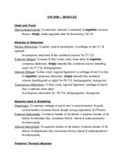 muscle list fall 2012