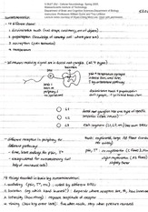 Lecture Notes 23