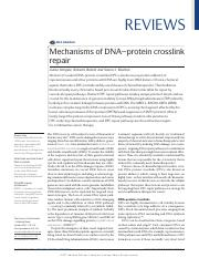 Mechanisms of DNA-protein crosslink repair.pdf