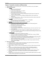 Study Guide CH17 TranscriptionTranslationRNAprocessing