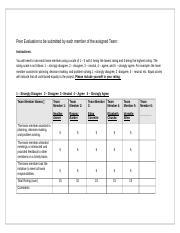 Unit6_Peer_Evaluation_Form (2).docx