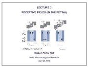 Lect3_ReceptiveFields_1SlidePerPage