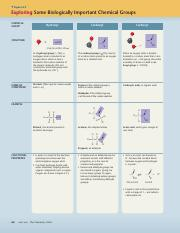 Chapter 4 Functional Groups.pdf