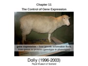 06-ch11-gene-exprWES