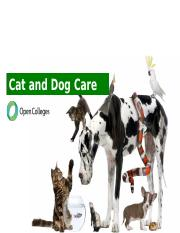 Cat and Dog Care.pptx