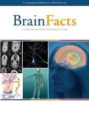Brain Facts book
