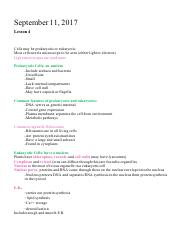 BIOL 1105 Lesson 4 Video Notes .pdf
