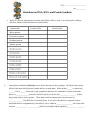 dna rna worksheet name row worksheet on dna rna and protein synthesis 1 below is a chart of. Black Bedroom Furniture Sets. Home Design Ideas