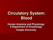 Circulatory System - Blood for Blackboard (2)