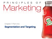 Chapter 7 - Segmentation and Targeting