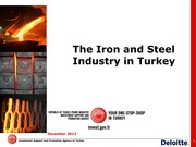 IRON-STEEL-INDUSTRY