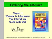 IE5 Ch1 - The Internet and World Wide Web - Notes