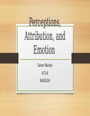 Perceptions, Attribution, and Emotion