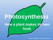 Photosynthesis for TpT