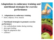 LECTURE 8 Adaptations to Exercise and Nutrition Strategies 1
