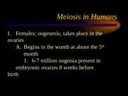 Chapter 8b-Meiosis Humans