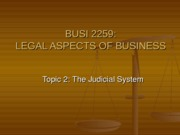 TOPIC_2_-_THE_JUDICIAL_SYSTEM