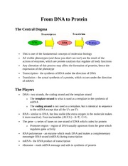 BIO 100 - From DNA to Protein - Class Notes