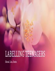 Labelling Teens
