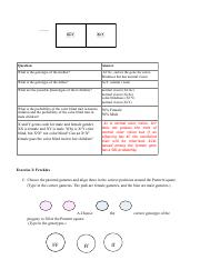 IndividualProject3SCIE207_Lab3_worksheet_REV 2 (dragged) 2.pdf