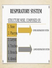 HAP - RESPIRATORY SYSTEM