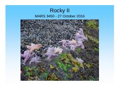 Lecture 22 27 Oct Rocky Intertidal 2