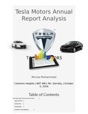 23 pages Tesla Motors Annual Report Analysis.docx