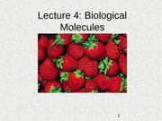 Lecture 4 - Biological Molecules