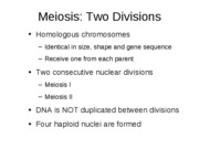 2.3 Meiosis and Genetics