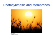Lectures 13-14 PhotosynthesisandMembranes