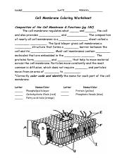 cell_membrane_coloring.pdf - NAME DATE PERIOD Cell Membrane ...