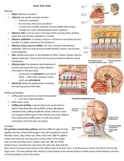 Touch, taste, smell - notes for Psych/Neuro 3515