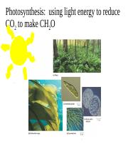 Lecture+7_8_Photosynthesis+FOR+POSTING.ppt