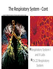 11_respiration1_post.ppt