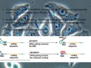 Lecture 6 - Protein structure and function pt 2 - stu