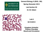 Blood and Circulation Lab PPT