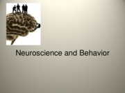 The Nervous System and Neuron Communication--Chapter 4_BB