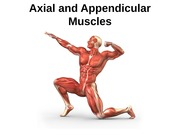 Week8&9_Axial and Appendicular Muscles_s