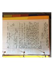 Write my essay biz