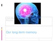 Our long-term memory